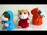 Видео обзор детская игрушка - Хомячок-повторюшка Ди-джей DJ (kidtoy.in.ua)