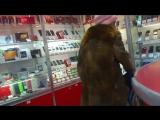 Бабка матершинница хотела купить телефон с флешкой! 1 часть