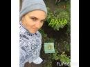 """IRINA TONEVA on Instagram: """"🎥 🙋🏼 Что это за гриб в последнем кадре, грибоманы?  #Toneva  #Music #Земфира"""""""