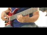 Ed Motta  - Smile (Bass Cover)