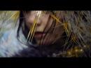 Björk: lionsong