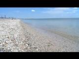 Такая вот водичка на Азовском море! Июнь 2015