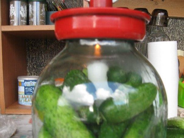 Как сохранить свежие огурцы на зиму в домашних условиях
