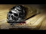 1352 Жизнь без никотина!