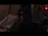 Анна Мацкевич Юрьевна снимает видео — Скорая помощь избила мужика на улице в городе Москве Скрытая видеокамера