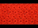 Плотный цветочный узор крючком Crochet Fiower Stitch Pattern