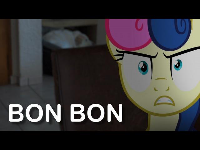 Bon Bon (MLP in real life)