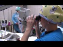 Операция по удалению катаракты у мартышки