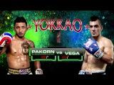Pakorn - Nicolas Vega, титульный бой на YOKKAO 16