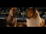 Мармадюк (2010) супер фильм