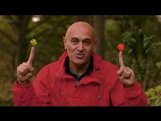 BBC Тайны квантовой физики 2. Да будет Жизнь (2014) HD