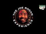 Джо Роган и Джои Диаз - «2 часа после обеда» (перевод MMA Nation)