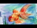 How to paint a fancy goldfish in watercolor