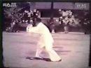 鬼魅神手 董虎岭先生传统杨氏太极拳85式(清晰版) 标清