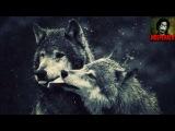 Легенда о волке и волчице (стихотворение)