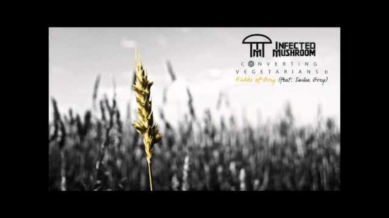 Infected Mushroom Fields of Grey feat Sasha Grey HQ Audio