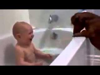 малыш и таксы в ваннеЭто лапочка  ПРИКОЛЫ С ДЕТЬМИ