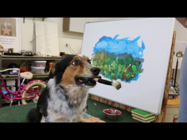 Jumpy dog art !