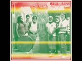 Sun Araw, M. Geddes Gengras Meet The Congos - FRKWYS Vol. 9 Icon Give Thank (2012) Full Album