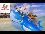 Веселая Акула! Отдых с ребенком на пляже. Атлантический океан, Карибы