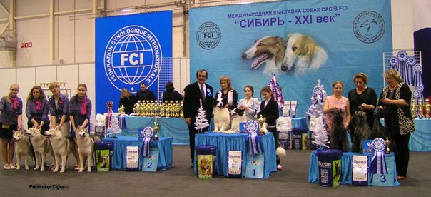 Best Kennel - Winners of the international dog show «Siberia - XXI century» (Novosibirsk), 12 December 2015