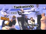 Taekwondo &amp MMA Sampler Ginger Ninja Trickster