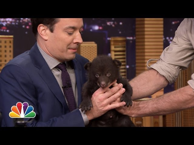 Jeff Musial Shows Off His Bear Cub