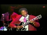 B. B. KING - All Over Again - Live Tokyo 1989