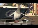 Мультик про голубя и секретного агента