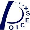 Центр ЕС в КФУ VOICES+