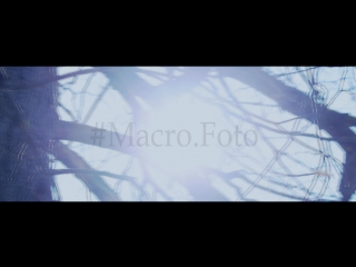#Macro.Photo Production / First video