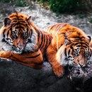 Кристюша Красивая фото #14