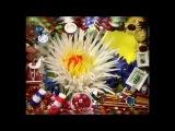 Делаем цветок астры из фоамирана (пористая резина). Мастер класс