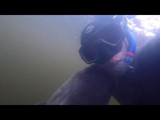 ведь нужно подводная охота в десногорске стоит оберегать очки