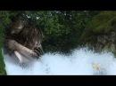 Панин Павел - Вспышка любви Flash de Amor