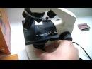 Школьный микроскоп Levenhuk 2L/3L NG обзор