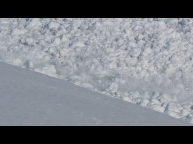 Avalanche! Run Rabbit Run! Original Video By Helipro.