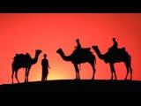 Beautiful Earth - Sahara Wonderland