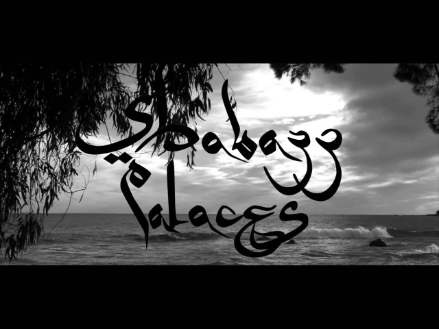 Shabazz Palaces - An Echo From The Hosts That Profess Infinitum
