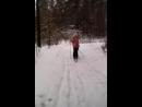 зимняя прогулка на лыжах