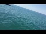 Сергей Дорошенко - Лето, Сочи, пляж
