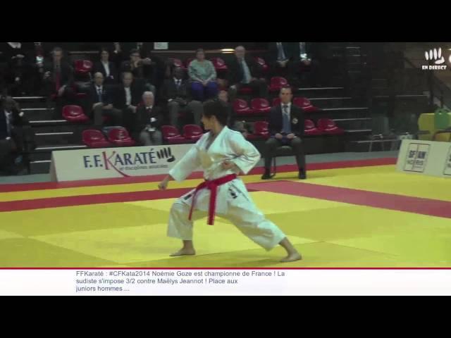 Sandy Scordo vs. Alexandra Feracci - 2014 French Female Kata Final