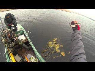 рыбалка в кременчуге ютуб