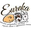 Эврика - карликовые кролики, ёжики и морские сви