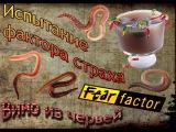 Смотреть видео  Испытание фактора страха  Вино из червей