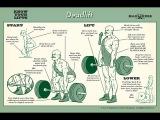 Правильный Бодибилдинг. Техника #4. Становая тяга. Классика.