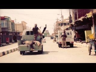 ИГИЛ действует в районе Фаллуджи. Пресс-релиз.