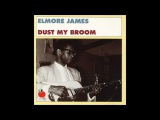 ELMORE JAMES Something Inside of Me