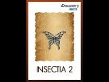 Страсти по насекомым 2. (9 серия из 13) / Insectia 2 / 2000