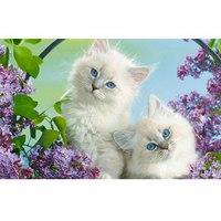 Пазлы 35 элементов «в мире животных. белые котята», Канц-Эксмо (Listoff, Unnika Land)